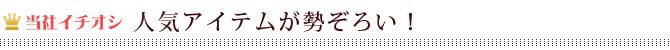 【当社イチオシ】人気アイテム!